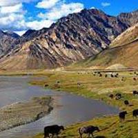 Dharamshala Manali Zanskar Valley Tour