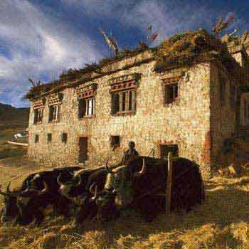 Classic Ladakh 4 Nights/ 5 Days Package