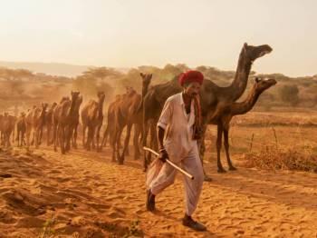 Sampoorna Rajasthan Tour