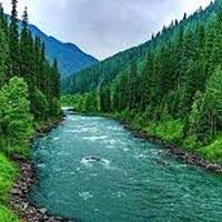Kashmir Special 6N/7D Tour