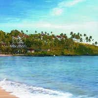 Kerala ​​6 Nights 7 Days Tour