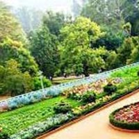 Bangalore-Mysore-Ooty Winter Special Tour