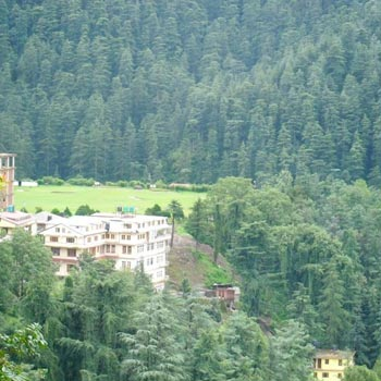 Shimla Short Tour