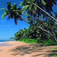 Goa Summer Holidays Tour