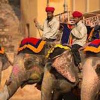 Rajasthan Tour Jaipur (2) - Jodhpur (2) - Udaipur (3...