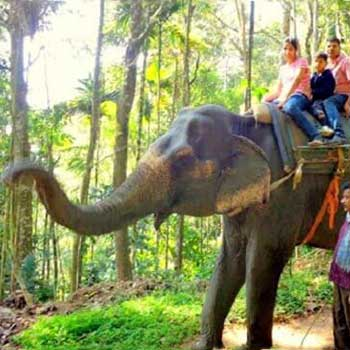 Kerala Family Holidays Package
