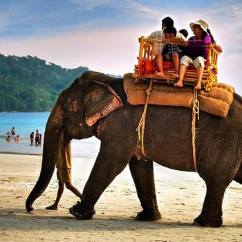 Port Blair, Havelock with Neil Island Package