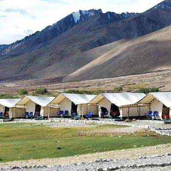 Camping & Riding Ladakh Tour