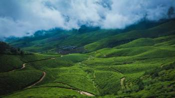 Monsoon Green and Tea Plantations Tour Package