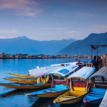 Kashmir Tour 8 Days/7 Nights Package