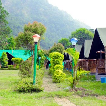 River side Camp in Rishikesh Tour