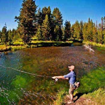Trout Fishing Tour