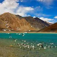 Wonders Of Ladakh (9 Nights / 10 Days) Tour - Delhi - Srinagar - Kargil - Leh - Nubra Valley - Pangong - Sarchu - Jispa - Manali
