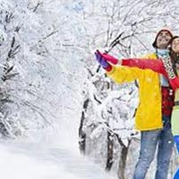Honeymoon Tour Of  Manali