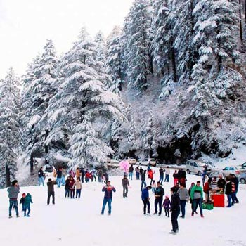 Shimla Tour 3 Day