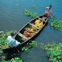 Munnar and Alleppey 3 Star Package for 4 days Tour