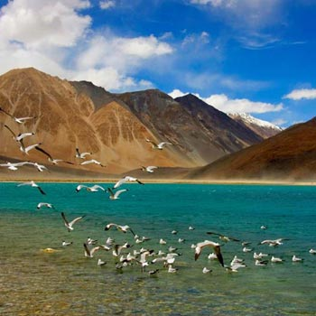 Ladakh Package For 5 Nights with Deluxe Hotels Tour