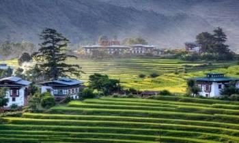 6 Days Paro - Thimpu - Wangdi - Paro Tour