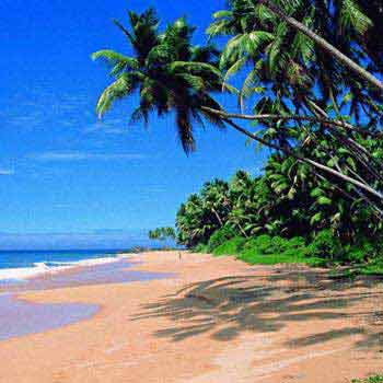 Enjoy Goa Package