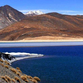 Pangong Package For Four Pax