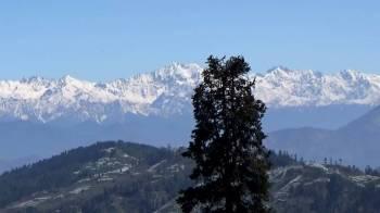 Howdy Trip to Shimla- Narkanda Tour