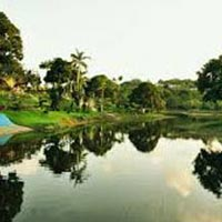Untamed Jungle - 7 Nights 8 Days Tour