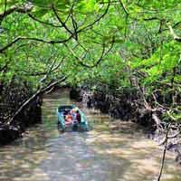5. Andaman 9 Nights And 10 Days