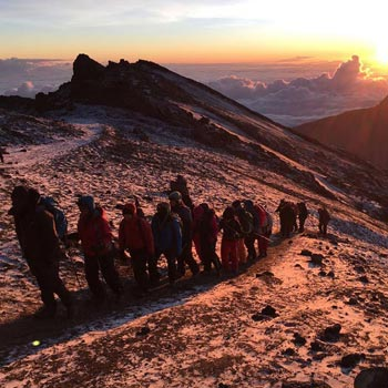 Kilimanjaro via Marangu Route Tour