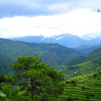 Dehradun-Mussoorie Tour Packages