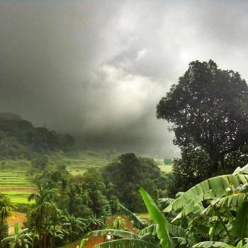 Bangalore Coorg Special Package