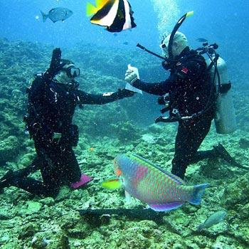 Andaman Port Blair Package