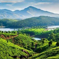 Fascinating Kerala Tour Package