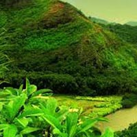 Sikkim - Darjeeling Tour (Duration: 10 Days)