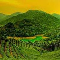 Darjeeling Holidays Package