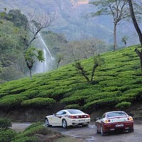 Hills of South India Tour