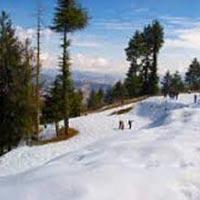 Shimla Tour with Kufri