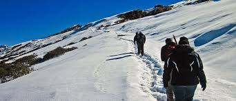 Chopta & Tughnath Trek Tour