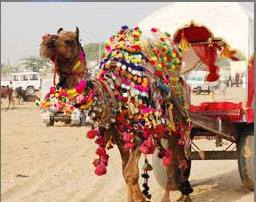 2 Days Heritage Jaisalmer Tour Package