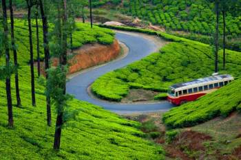 11 Days Kerala Tour Package