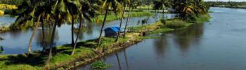 Cochin Munnar Thekkady Alleppey Package