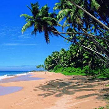 Full Day South Goa Tour From Calangute