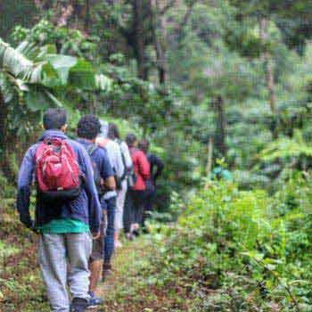 Trails of Vindhyas Tour