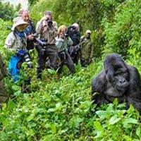 3 Days Nyirangongo Volcano – Congo Tour