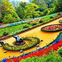 Mysore - Ooty - Kodai Tour