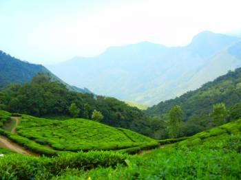 Classic Kerala Tour