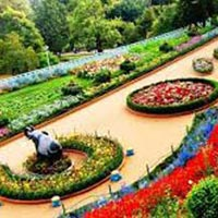 Mysore - Ooty - Kodaikanal - Bangalore 5 Days / 4 Nights