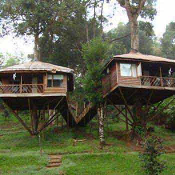 Wayanad Tour with Vythiri Treehouse Package