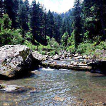 Jibhi Valley Tour