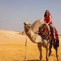 QUOTE ( Dubai City) Tour
