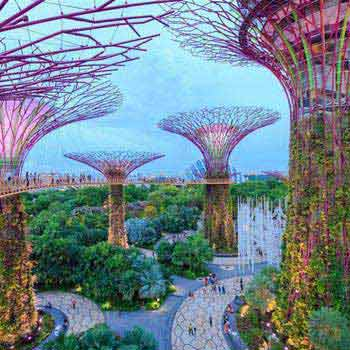 Amazing Singapore  Trip Package